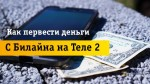 Перевод денег с Beeline на Tele2: 3 быстрых способа