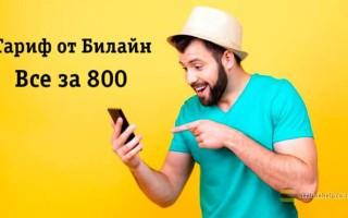 Полный обзор плюсов и минусов тарифа «Все за 800» от Beeline