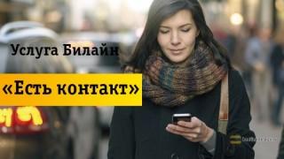 Подробный обзор услуги «Есть Контакт»