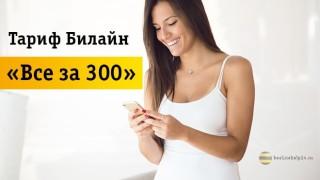 Большой обзор тарифа «Все за 300»