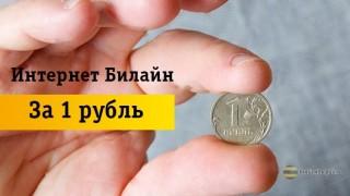 Как получить интернет от Beeline за 1 рубль