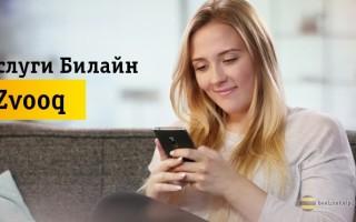 Как самостоятельно отключить подписку на сервис Zvooq