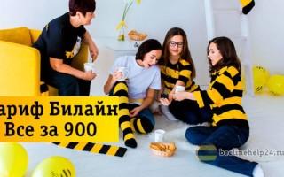 Особенности семейного тарифа «Все за 900» от оператора Билайн