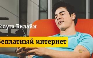 Подробное описание услуги «Бесплатный интернет навсегда»