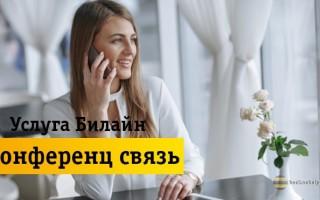 Преимущества и недостатки использования услуги «Конференц связь» от Билайн