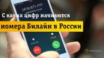 С каких цифр начинаются номера Beeline в России