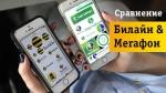 Сравнение Мегафон и Билайн — пусть победит лучший!
