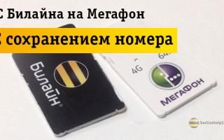 Как сохранить свой номер Beeline при переходе на Megafon