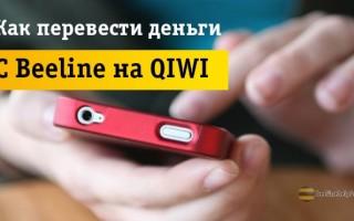 3 легких способа перевода денег с Beeline на кошелек QIWI