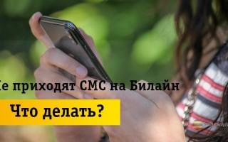 Что делать, если не приходят СМС на телефон