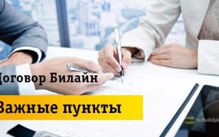 Подробная информация  про клиентский договор с Beeline