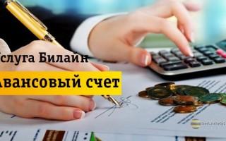Подробная информация про услугу «Авансовый счет»